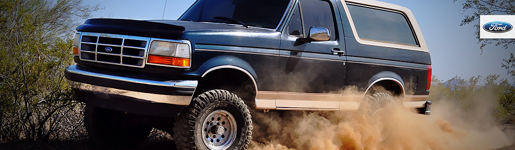 Ford Bronco F-Series Pickup 92-96