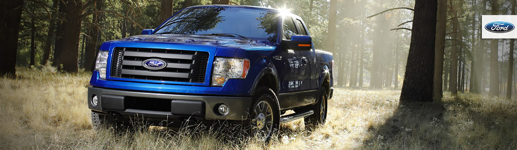 Ford F-150 09-14